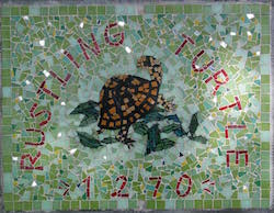 bost turtle mosaic